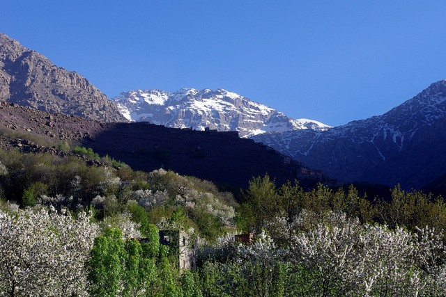 Court of Auditors Calls on Morocco to Better Manage National Parks