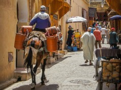 Drought, COVID-19, Global Recession to Hit Morocco's Economy Hard