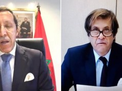 Morocco, France Co-Chair UN Virtual Meeting on Climate Change