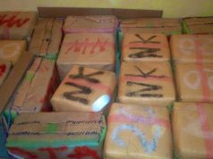 Police Incinerate 12 Tons of Cannabis in Laayoune