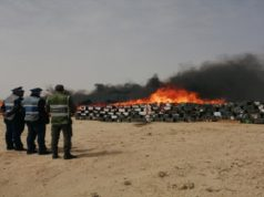 Police in Morocco's Dakhla Incinerate 15.80 Tons of Confiscated Cannabis