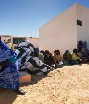 MEPs Probe Algeria's Aid Diversion, Extrajudicial Executions in Tindouf