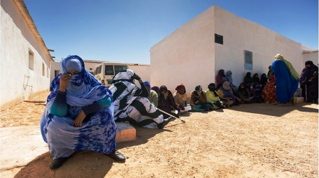MEPs Probe Algeria's Aid Diversion, Extrajudicial Executions in Tindouf