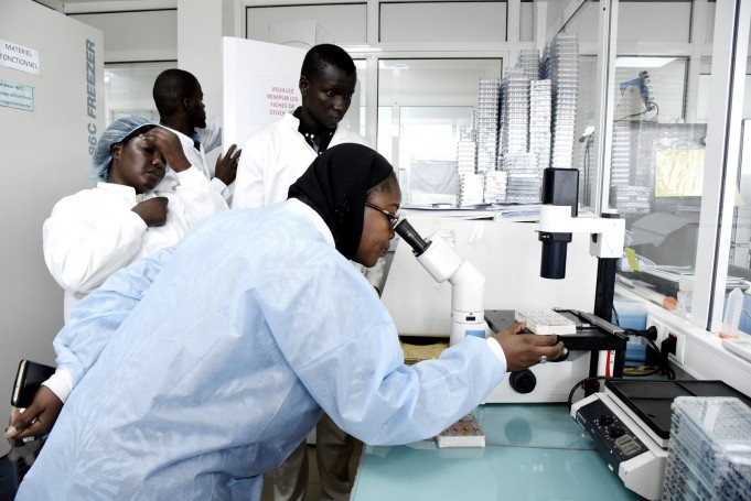 COVID-19 in Africa: 'Signs of Hope' Despite Some Countries' Rising Cases