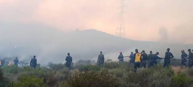 Fire Destroys 54 Hectares of Forest in Al Haouz, near Marrakech