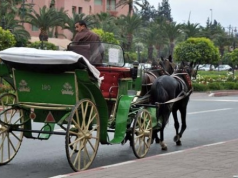 Horse carriages in Marrakech.