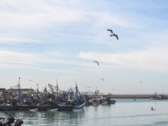 Morocco Closes Port of Laayoune to Avoid Second Wave of COVID-19