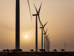 Siemens Gamesa 'Looks Forward' to Boosting Morocco's Wind Energy