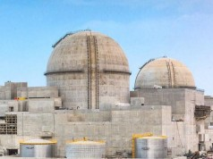 UAE Nuclear Power Plant Signals Shifting Priorities in MENA Region