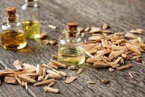 Moroccan Beauty Secrets: 5 Best Essential Oils and Their Benefits