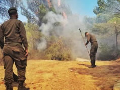 Morocco's Royal Armed Forces Fight Ongoing Wildfire Near Tangier