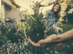 Physical and Mental Health Benefits of Gardening