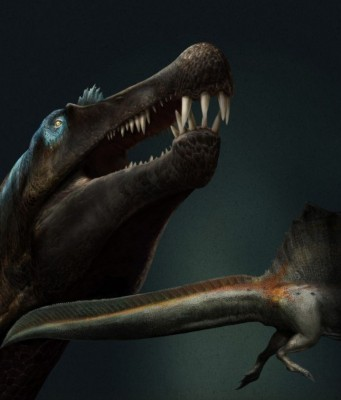 Spinosaurus: Scientists Reveal New Findings on Moroccan River Monster
