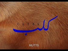 'Clebs': Short Film on Moroccan Animal Sanctuary Wins Over FIFF Jury