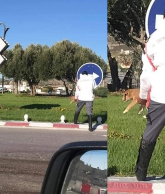 Gendarme Stops Traffic in Tangier to Reunite Stray Puppy With Mother