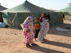 UN Report Stresses Hunger Pandemic, Malnutrition in Tindouf Camps