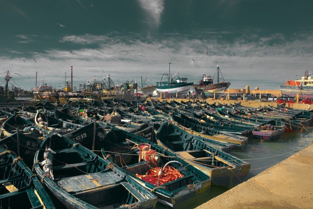 Morocco, Russia Sign New Fisheries Cooperation