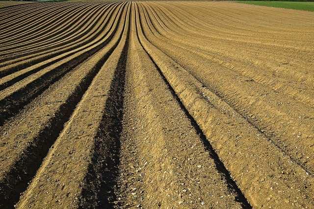 OCP: US Import Duties on Moroccan Fertilizers to Hurt American Farmers