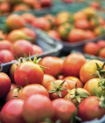 Tomato Prices Plummet in Mauritania After Guerguerat Traffic Resumes