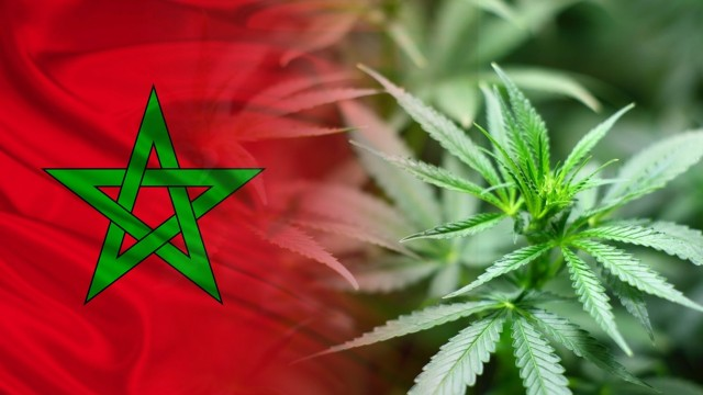 Morocco Votes 'Yes' in Historic UN Vote on Cannabis