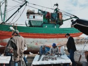 Government Approves Morocco-Russia Fisheries Agreement