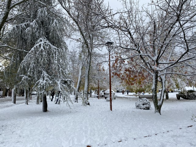 In Photos: Snow-Covered Ifrane, Morocco's Beautiful Winter Wonderland