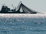 Moroccan Committee Officializes Morocco-Russia Fisheries Agreement