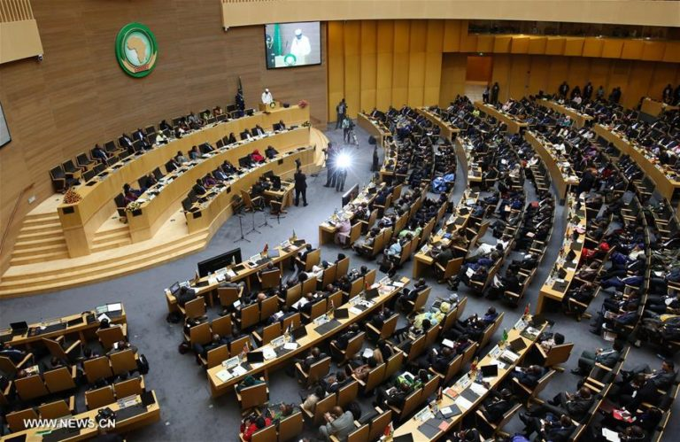 African Union: Morocco Calls for Cooperation to Ensure Education