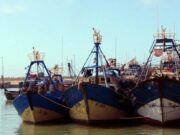 Fish Landing at Morocco's Tan-Tan Port Reaches $58.8 Million