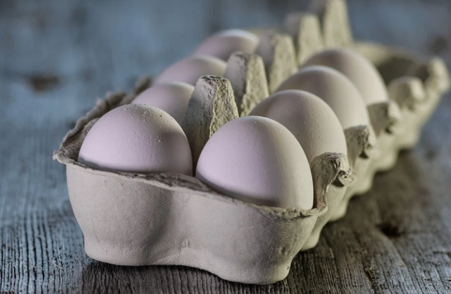 Moroccan MP Stirs Controversy for Suing Employee Over 16 Eggs