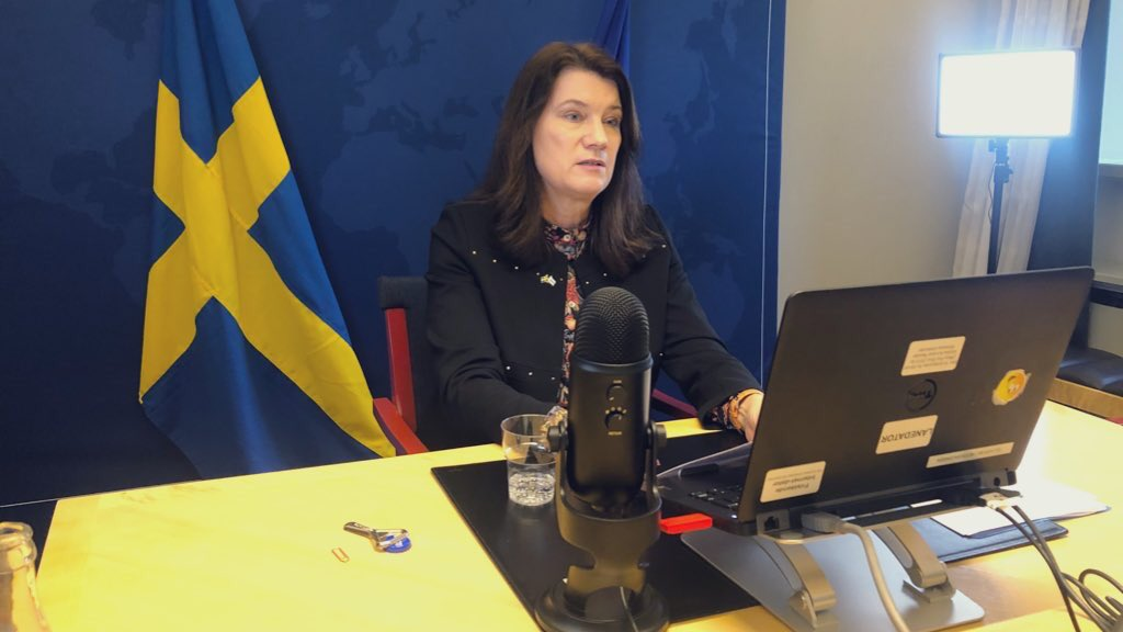 Swedish FM Calls for UN-Facilitated Process For Western Sahara