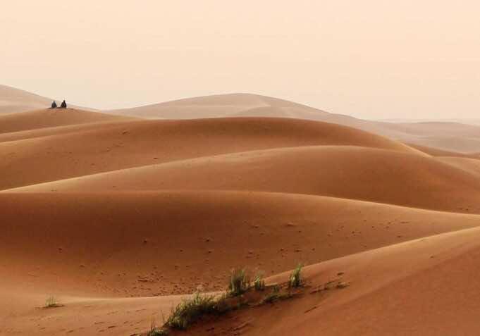 Desperate Polisario 'Ready To Talk' Amid New Diplomatic Reality