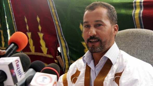 Sahrawi Activist Questions AU's Recognition of Self-Proclaimed SADR