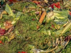 Food Waste Rises Dramatically During the Month of Ramadan in Morocco