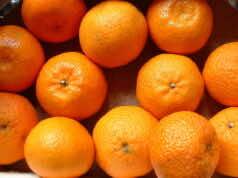 Mandarins: Morocco's Royal Family Wins Legal Battle Against Spanish Farmer