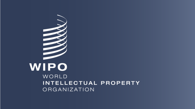 African Countries Should Focus on Intellectual Property to Drive Growth