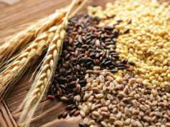 Morocco Forecasts Significant Increase in Cereals Production in 2021