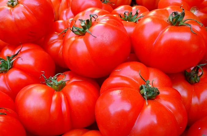 Morocco Third Largest Tomatoes Supplier to UK in 2020
