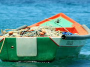 Morocco's Fishing Industry Maintained Performance Despite COVID-19 Crisis