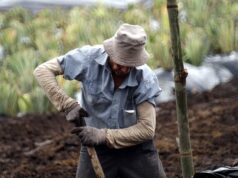 Spain Dismantles Network Exploiting Moroccan Workers
