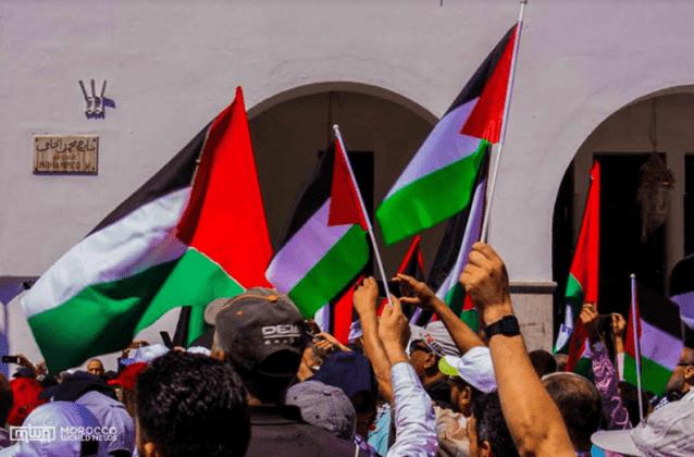 Palestine Supporters Defy France's Ban on Pro-Palestine Demonstrations